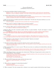 311C F08 Worksheet_7+A