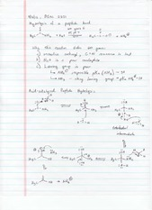 hydrolysis of a peptide bond Notes