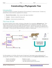 Constructing_a_Phylogenetic_Tree_1.pdf