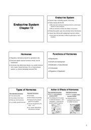 Ch12 Endocrine System