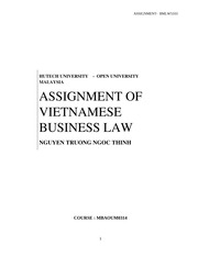 ASSIGNMENT OF VIETNAMESE BUSINESS LAW OF NGUYEN TRUONG  NGOC THINH