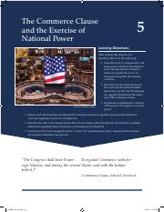 05CH_Ivers_Constitutional.pdf