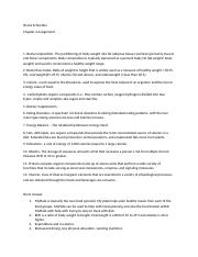 Essay on leisure activities