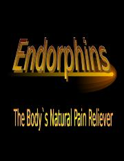endorphins.ppt