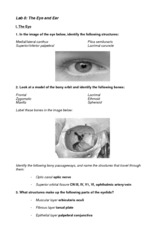 Lab 8 Worksheet answers