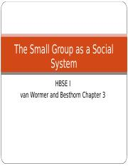 The Small Group as a Social System