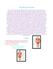 The Muscular System unit page.docx