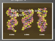 Lecture - DNA Structure and Analysis