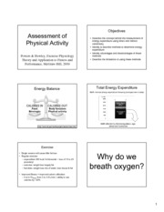 Assessment_Physical_Activity handout