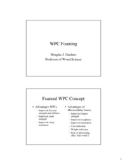 WPC foaming 1-9-08