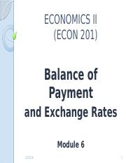 Module_6_-_Balance_of_Payment