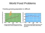 World Food Problems