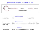 Transcription and RNA