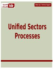 Unified Sector Process.pptx