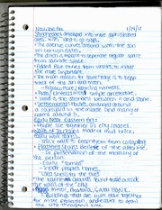 Neolithic Art Notes