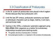 3.0 The Prokaryotes September 23, 2005
