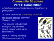 Community Structure - Competition