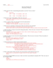 311C F09 Worksheet_10+A