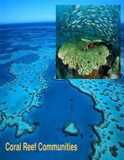 coral_reefs (1)