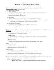 review sheet excercise 31 conduction system Start studying exercise 31 conduction system of the heart and electrocardiography learn vocabulary, terms, and more with flashcards, games, and other study tools.