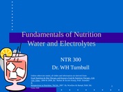NTR_300_water_and_electrolytes
