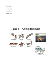 isopod behavior lab report Isopod behavior, or the rollypolly lab objectives:  design and conduct an investigation of animal behavior  isopod handling and rearing  clean them up and turn in a lab report lab report should be typed (except drawings unless you want to scan them) 1 background and purpose (describe the purpose of the experiment, include any.