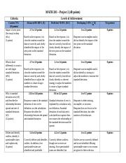 Project 2 Rubric 8wk(2).docx
