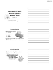 Chapter 11 handouts