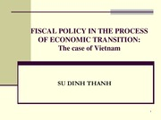 8.Fiscal policy - Vietnam