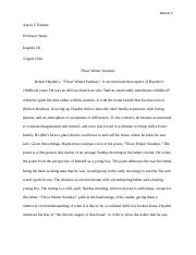 Example A Essay Aaron Reimer.docx