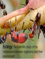 Class1_EcologyIntroduction.pdf