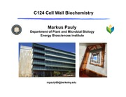 0916_Pauly_Cell wall