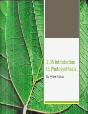 2.06 Photosynthesis.pptx
