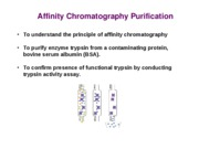 Lab _3 - Affinity Chromatography