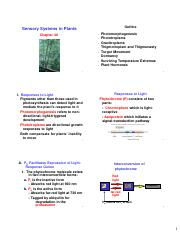 chapter_40_powerpoint-6 slides.pdf