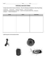 VIRUSES AND BACTERIA Worksheet.doc - Name Date Class VIRUSES ...