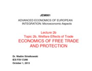 lecture_2b_trade_quotas_and_tariffs_2013