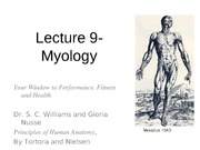Lecture 9-Myology