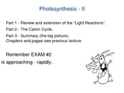 BB_LECTURE-16_Photosynthesis-2