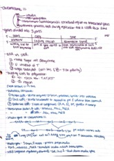 Intro to Physiology Class Notes  6