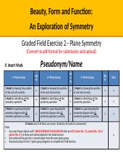 Field Exercise 2 - Plane Symmetry - Template - August 2015