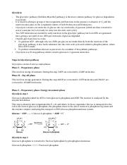 Notes - Microbial metabolism-1