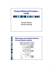 Lecture_21___cheese_making__2_