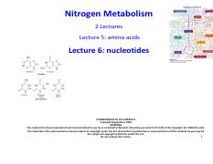 Lecture A6 - Nitrogen metabolism II (1)
