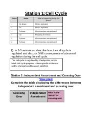 Mitosis and Meosis Stations P5.docx