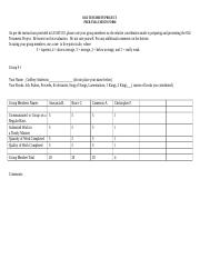 LEAD510_OT_Project_Peer_Evaluation_Form.doc