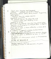Visuality and Literature Notes