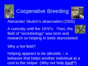 Cooperative Breeding