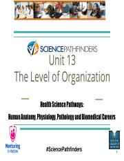 Unit13_The Levels of Organizationfinal.pdf