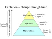 Lecture 24 - Population Evolution 11-28